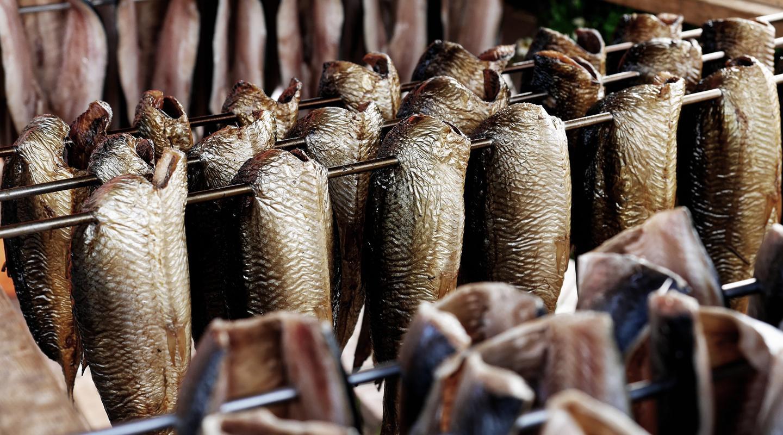 3 Jenis Ikan yang Sering Dipakai dalam Masakan Indonesia